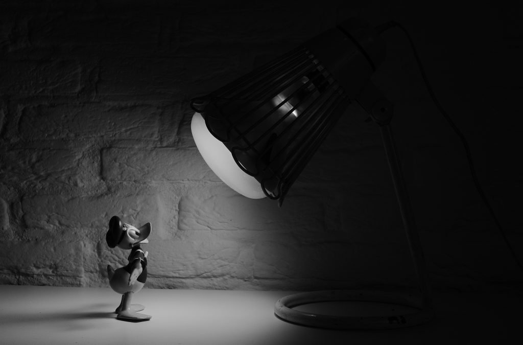 Disney's Donald Duck in the warm glow of the limelight, Memory Maker guide by Heyday Travel Company
