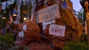 """Rocks with signs stating """"Expedition Everest"""" and """"BEWARE"""""""